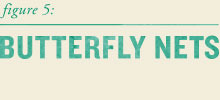 Out_header_butterflys