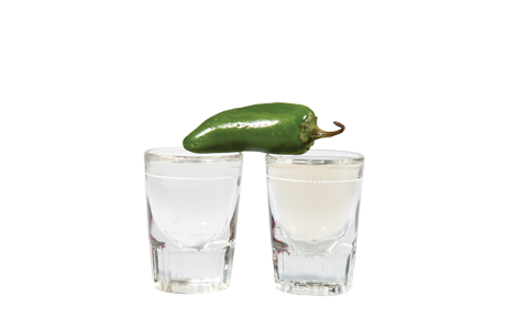 Thehousemadepickleback