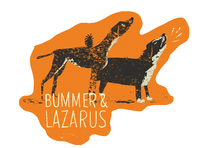 Bi-animals_bummerlazarus_082113