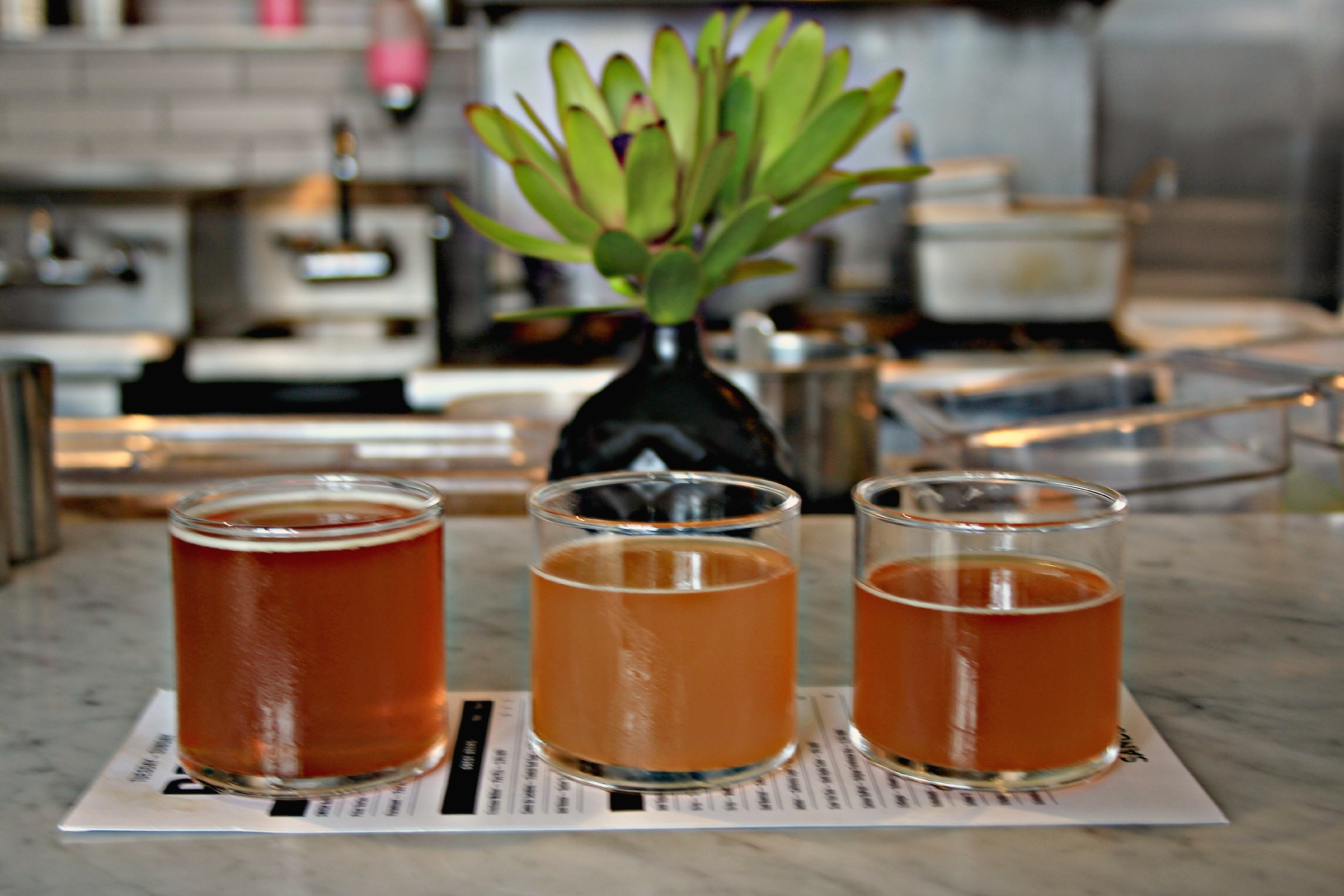 San Francisco's Beer Scene Is Off-the-Charts Amazing Right Now. Here ...